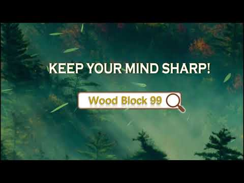 video review of Wood Block 99