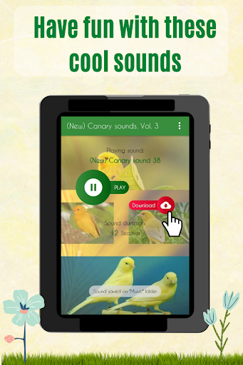 Canary Sounds, Chants and tones free screenshot 4
