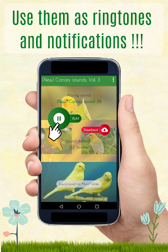 Canary Sounds, Chants and tones free screenshot 3