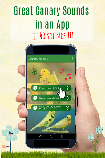 Canary Sounds, Chants and tones free screenshot 1
