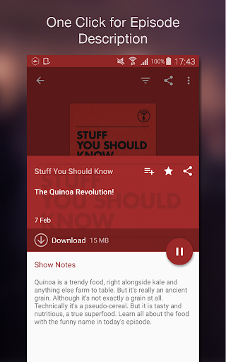 Podcast Player screenshot 6